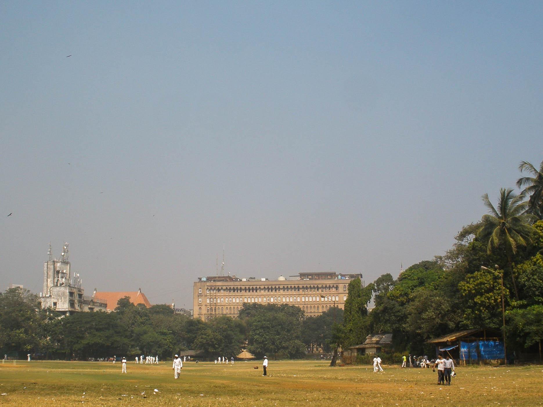 pole-dla-kriketa