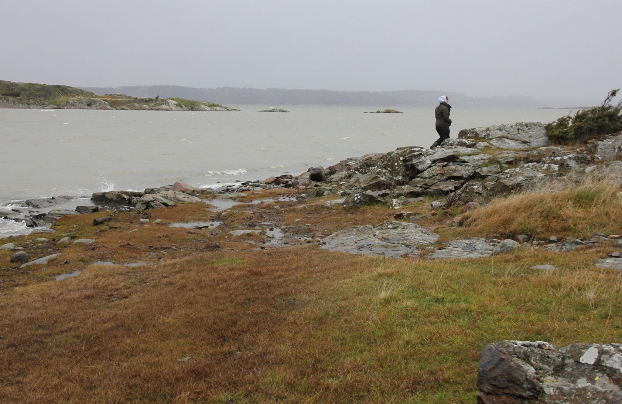 morskoy-bereg