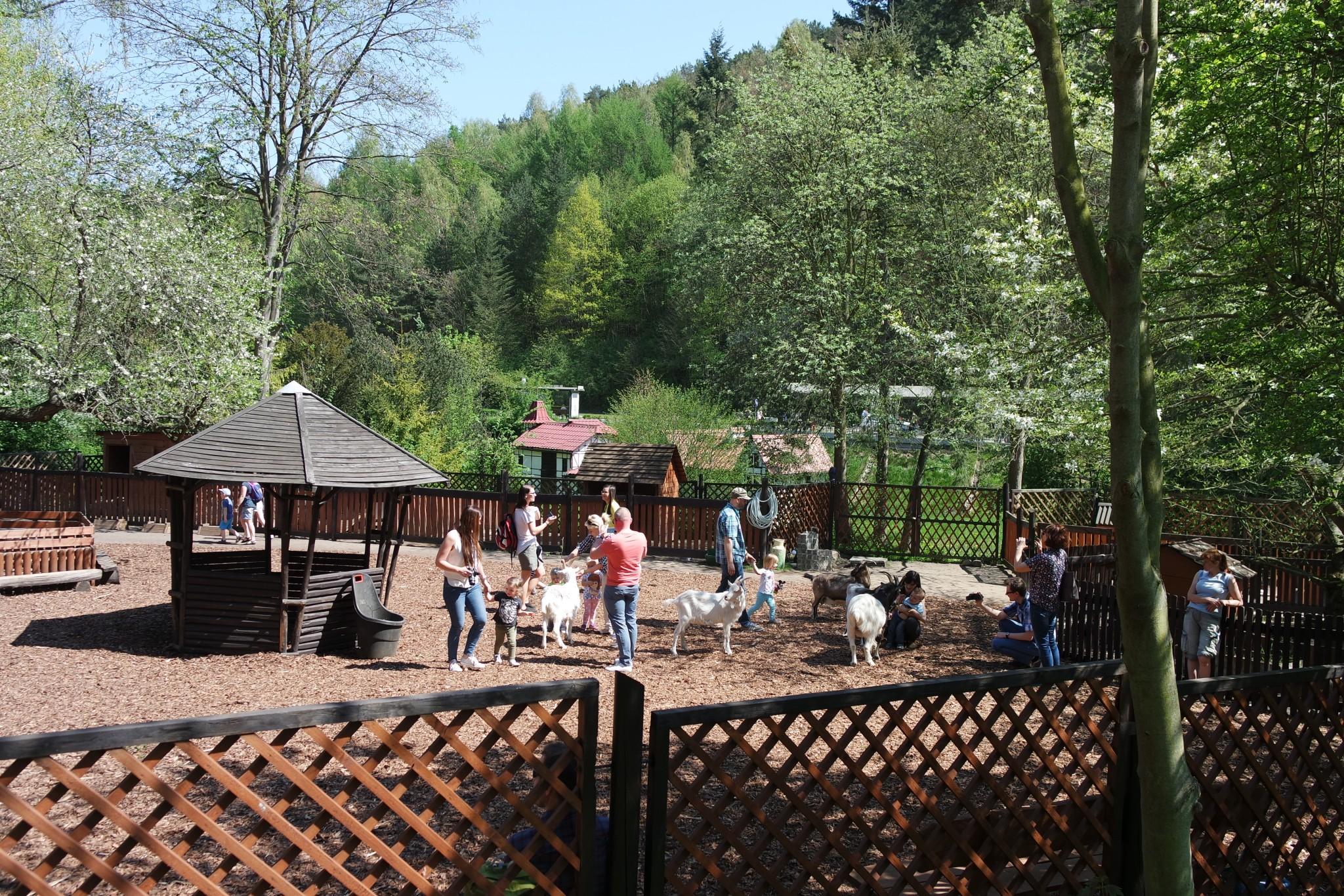 kontakniy-zoopark