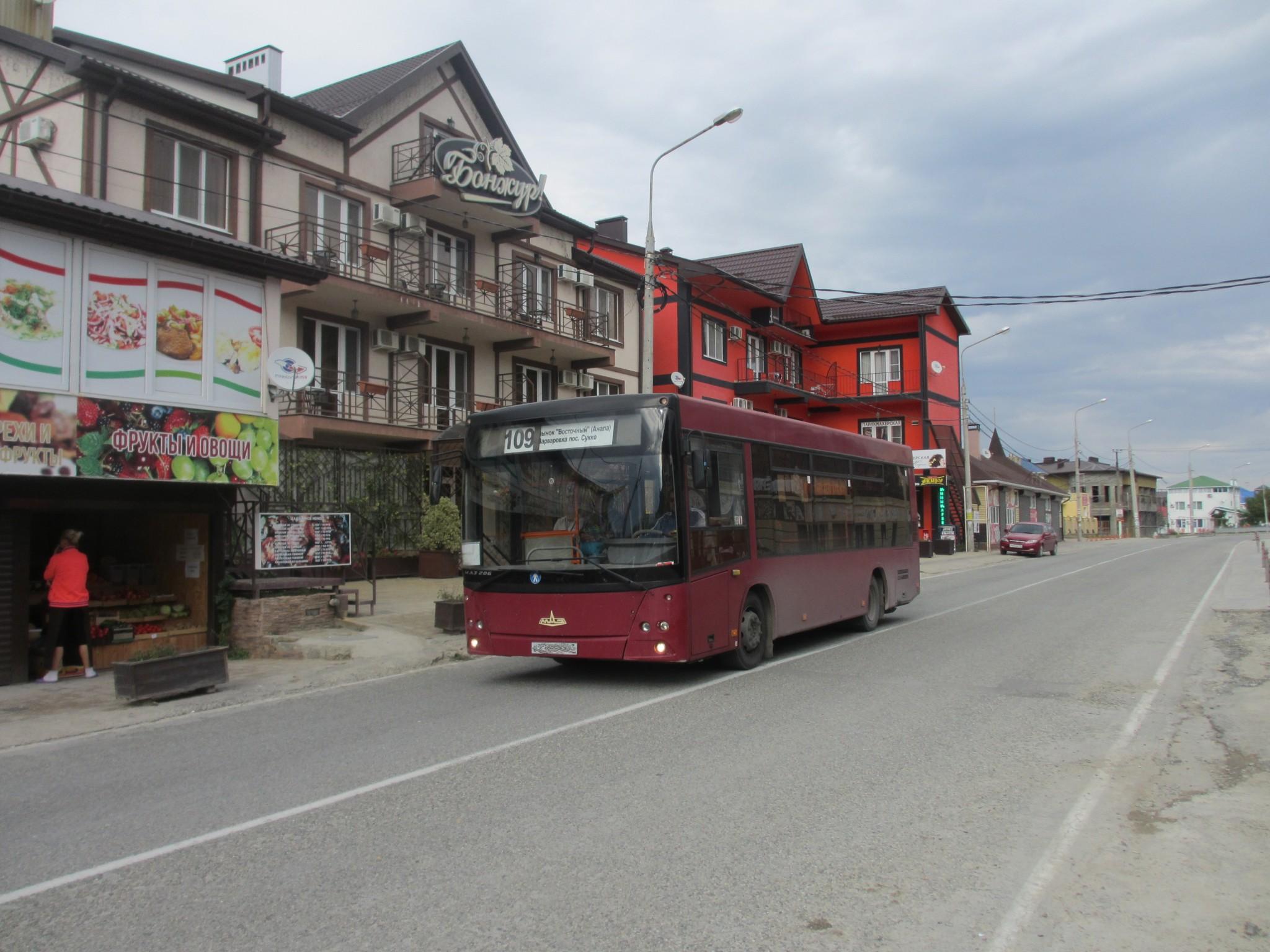 avtobus-109-v-sukko
