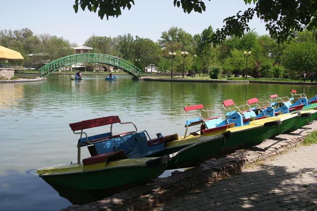 katamarani-tashkent