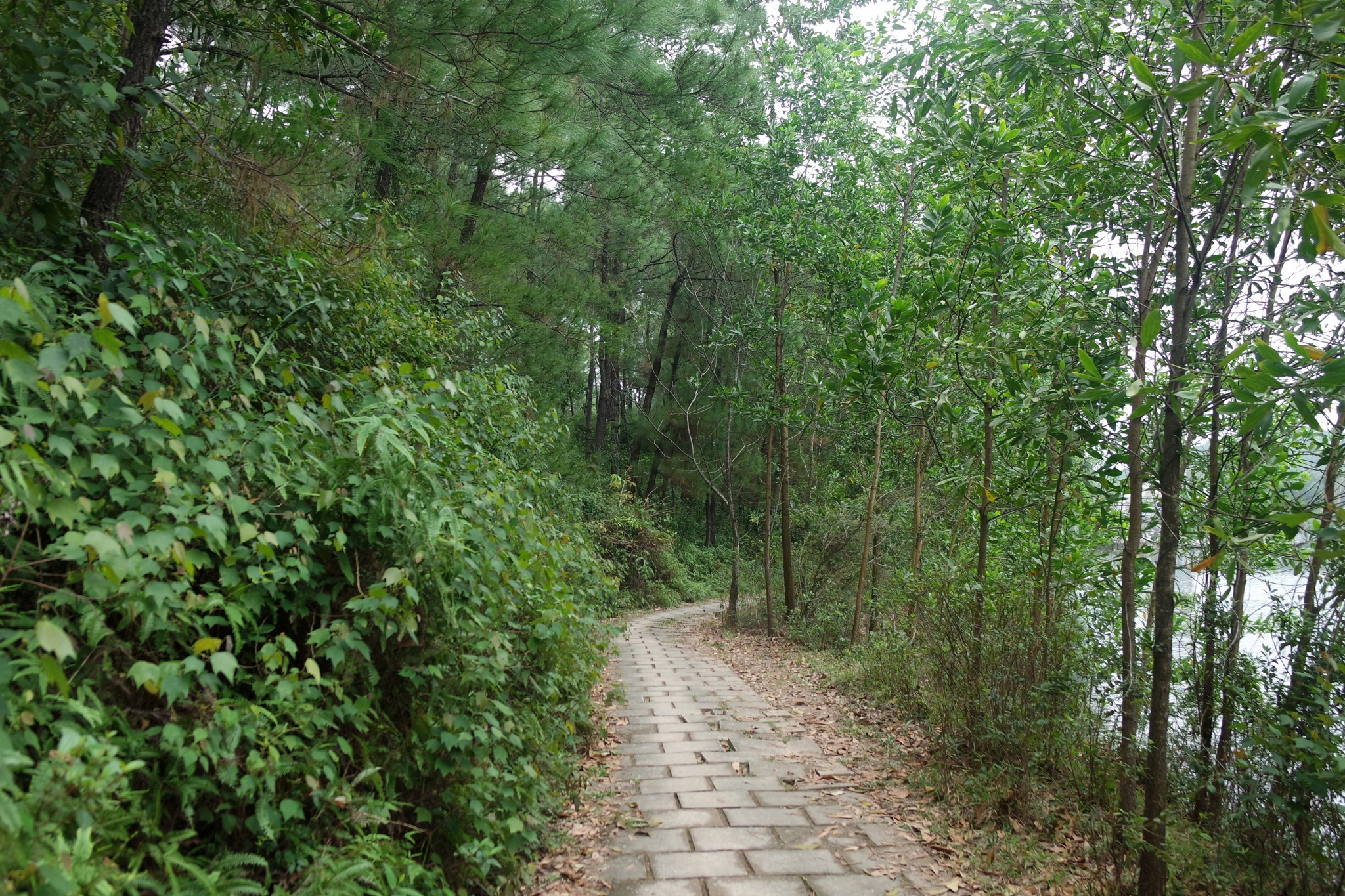 akvapark-hue-vietnam