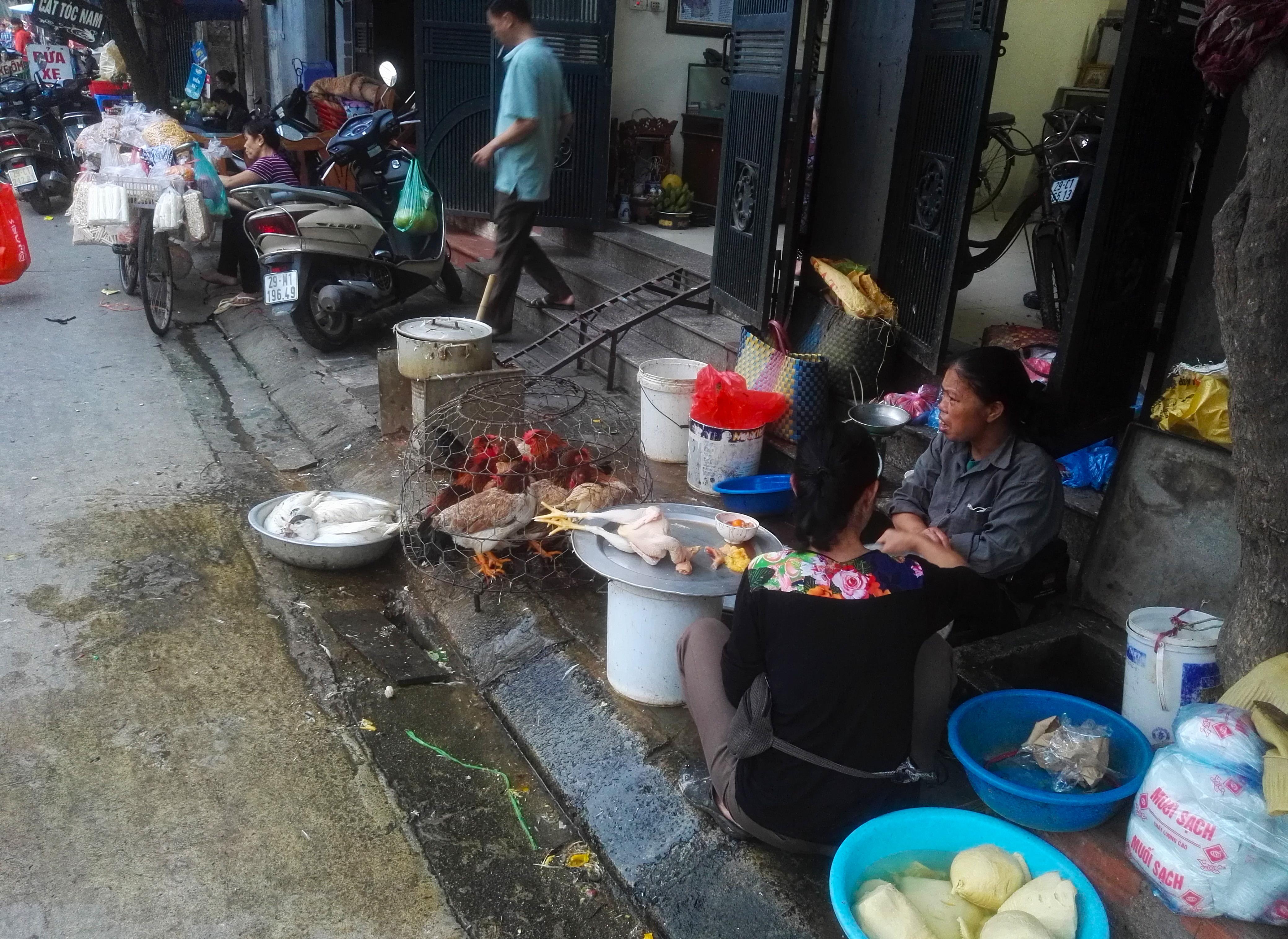 vietnam-prodazha-ptici