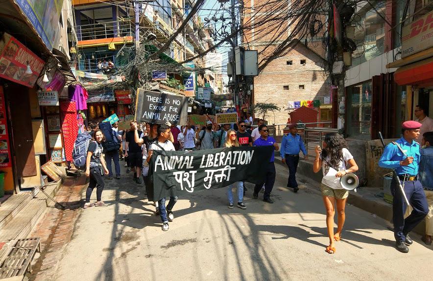 nepal-katmandu-alf
