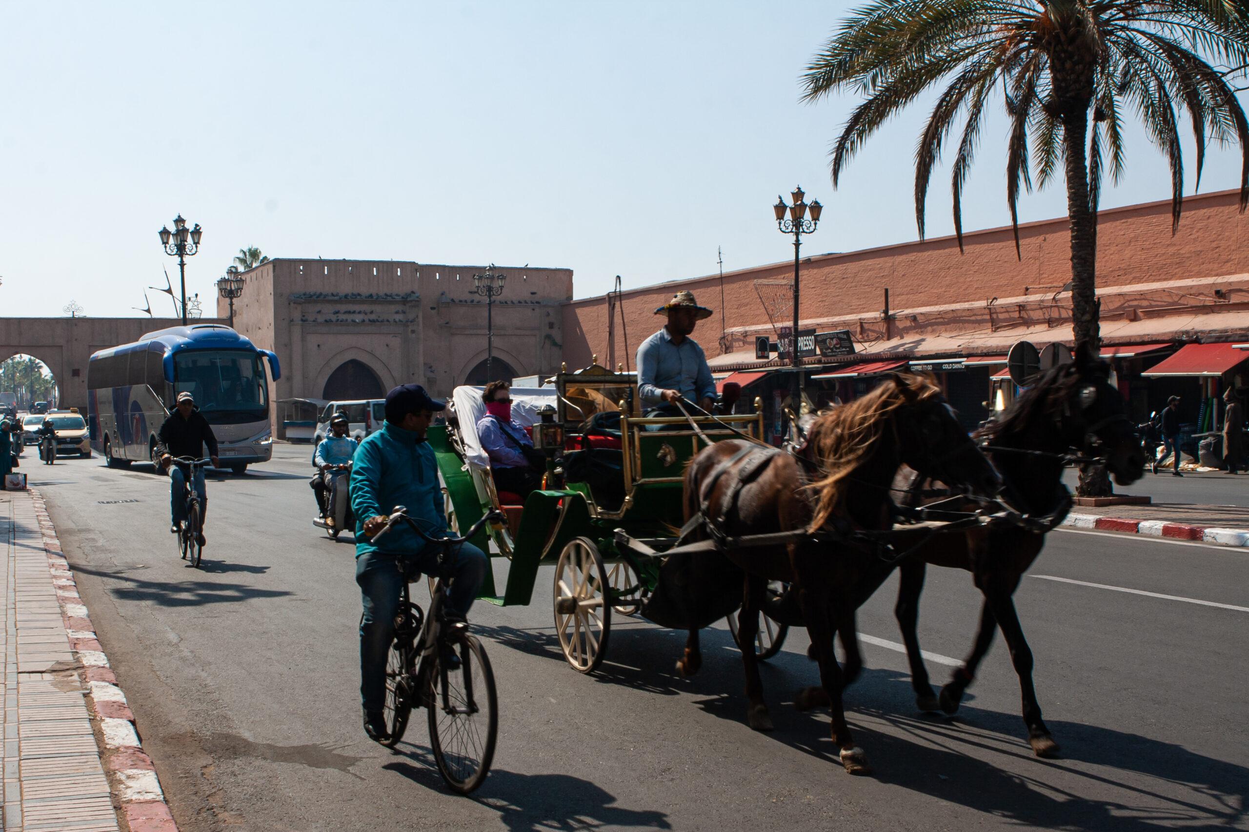 povozki-marokko
