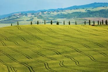 Сто евро в кармане и пешком по Тоскане