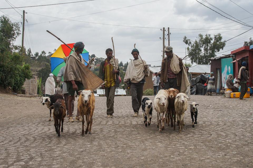 lalibela-efiopia