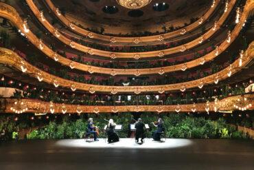 В барселонском оперном театре сыграли концерт для домашних растений