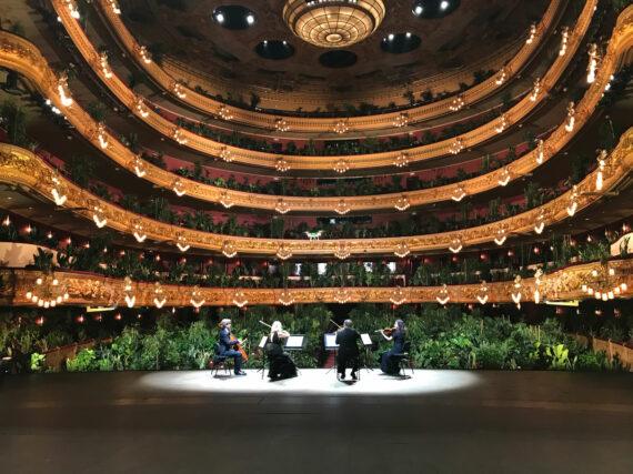 liceu-opera-koncert-rastenia