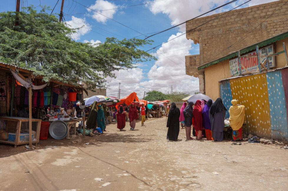 somalilend-borao