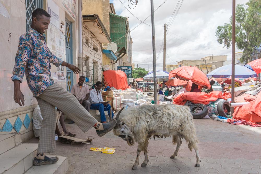 somalilend-hargeisa-stolica