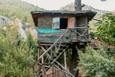 neobichnie-hosteli-Kadir's-Tree-House-turcia