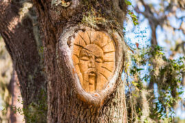 drevesnie-duhi-st-simons