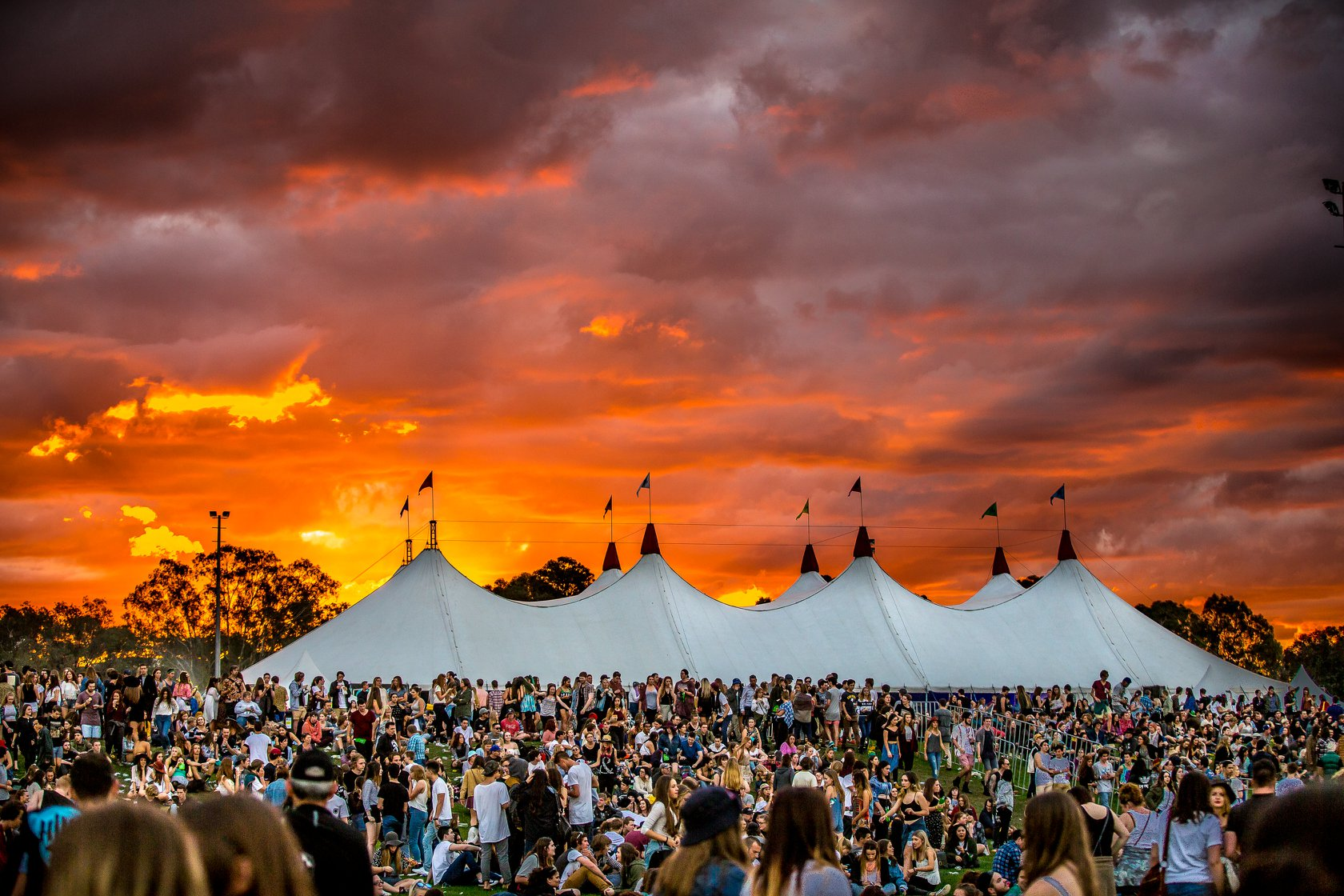 groov in the moo festival