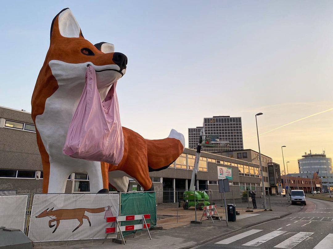 Bospolder-Fox-rotterdam