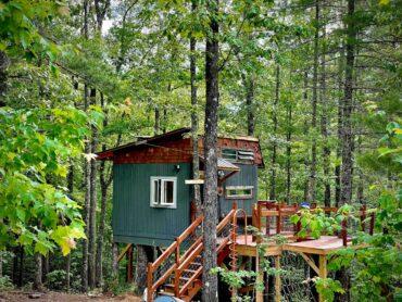 Eli's-Treehouse-dom-na-dereve